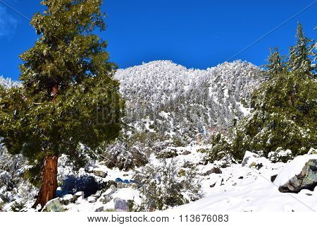 Rural rugged mountain landscape blanketed in snow taken at Mt Baldy, CA