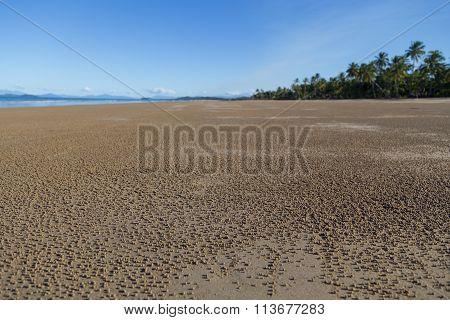 Mission Beach in Queensland, Australia
