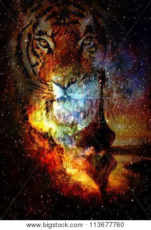 Viking Boat and tiger head  in space with stars, computer collage, Boat with wood dragon.