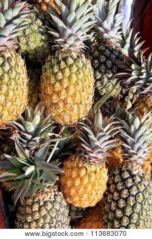 Fresh, whole pineapples