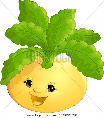beautiful turnip on a white background
