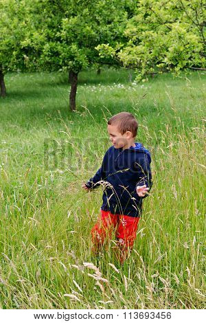 Child Standing In Orchard In Long Grass