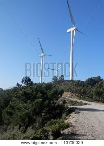 Windfarm On Hill