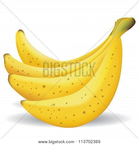 Bananas Fruit Illustration
