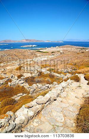 Antique  In Delos Greece The  Old Ruin Site