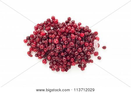 Frozen cranberry isolated