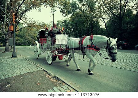 NEW YORK CITY - FEB 19: Central Park horse carriage on February 19, 2012 in Manhattan, New York City.It is a National Historic Landmark since 1963 and is the most visited urban park in the US