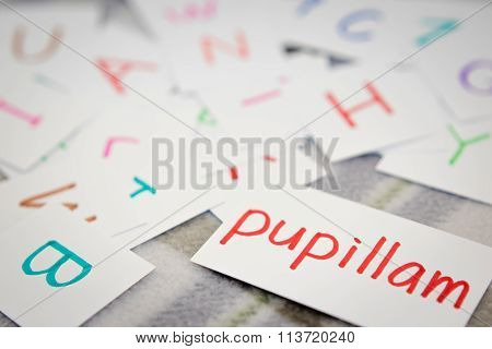 Latin; Learning The New Word With The Alphabet Cards; Writing Apple