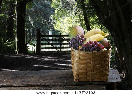 Fruit, pear, grape, banana, mango, orange