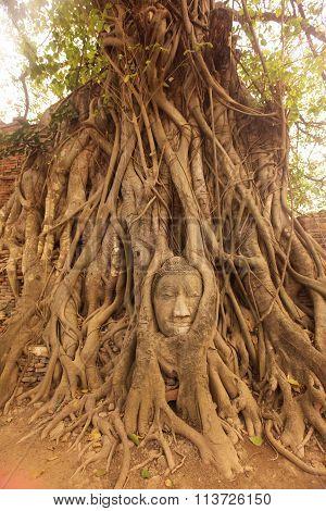 Asia Thailand Ayuthaya Wat Phra Mahathat Stone Head