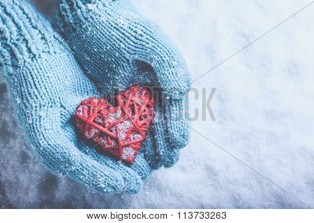 Woman Hands In Light Teal Knitted Mittens Are Holding A Beautifu
