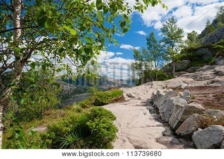 Norway, Picturesque Stony Track In Mountains Framed With Vegetation