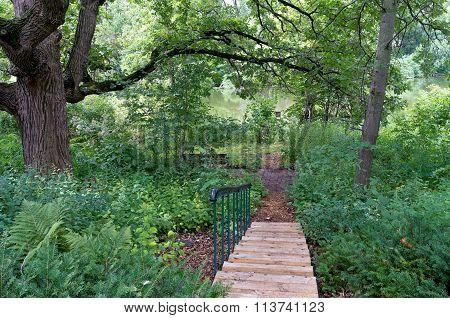 Burr Oak Backyard And Stairs