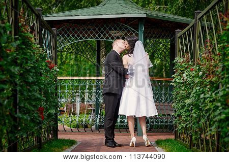 Bride And Groom Kissing Near The Gazebo In The Park