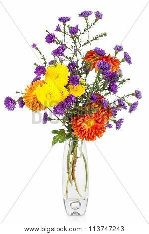 Beautiful Bouquet Of Aster Flowers In Vase