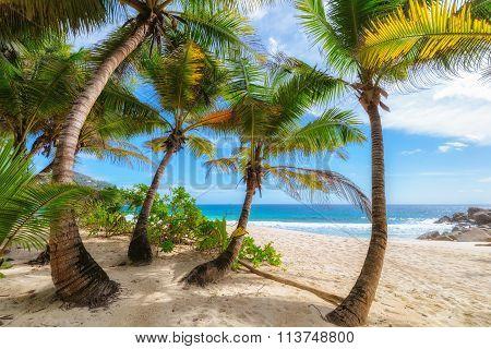 Anse Intendance beach in Mahe Island, Seychelles