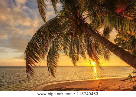 Tropical beach at sunset - nature background, Seychelles