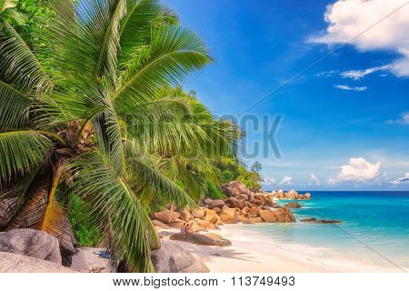 tropical beach Anse Lazio, Praslin on the Seychelles