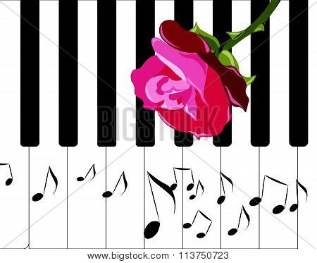 Piano music and red rose