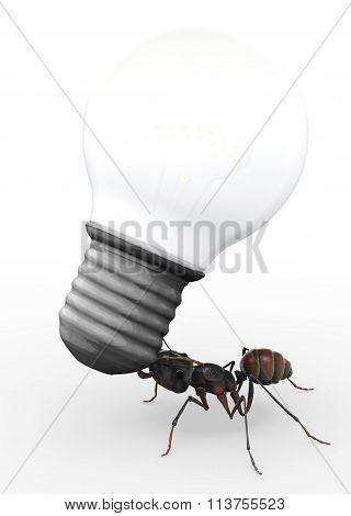Ant Carrying Lightbulb