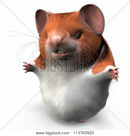 Hamster Ready For Whatever Comes His Way