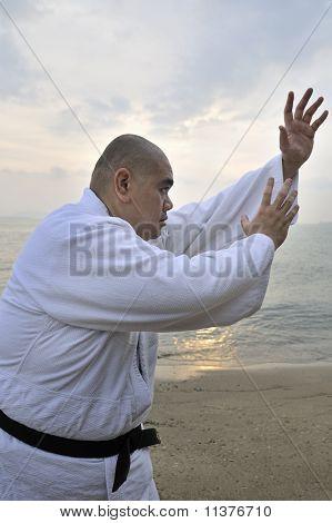 A aikido man