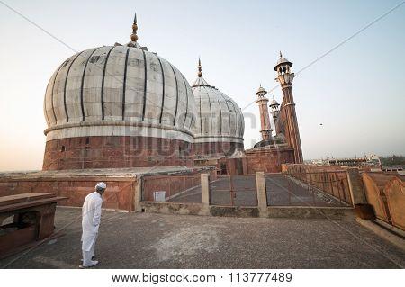 Jama Majid Domes, Delhi, India
