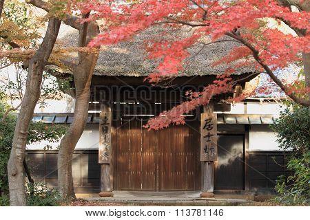 Autumn leaves at Engaku temple in Kamakura Japan