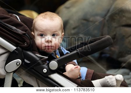 Portrait Of A Baby Boy On A Stroller