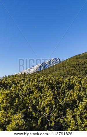 Balloon Flies Over The Top Of A Mountain.