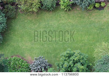 Green Garden With Space