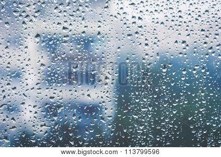 Rainy window, blurry view. Cold tones