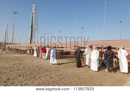 Camel Racetrack In Doha, Qatar