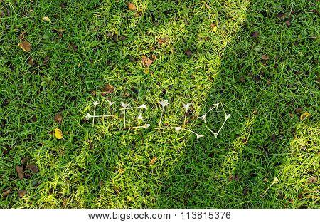 Hello Grass Background