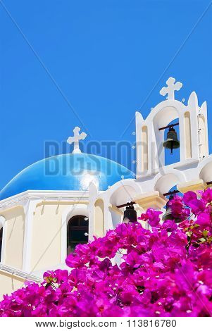 Fira Church Pink Flowers