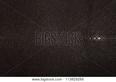 Stingray leather black color