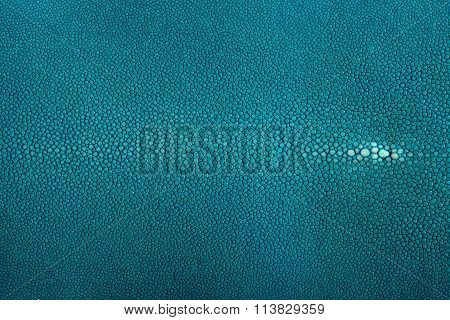 Stingray leather turquoise color