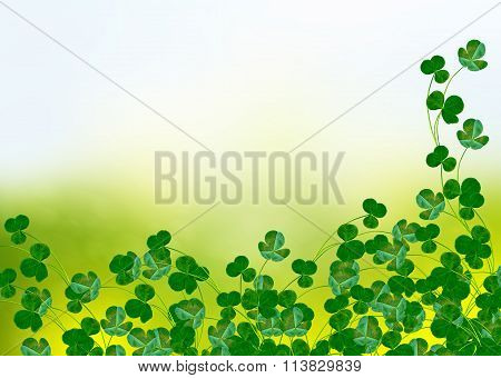 Green Clover Leaves On A Background Summer Landscape