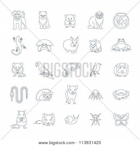 Animals Pets Vector Flat Thin Line Icons Set