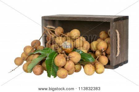 Longan Fruits