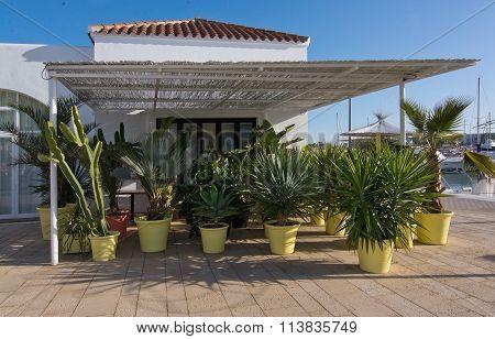 Details In Santa Eulalia Marina