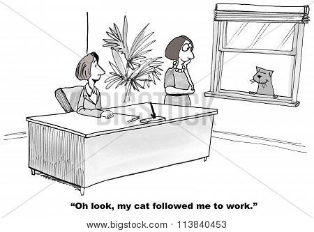 Cat Followed Owner to Work
