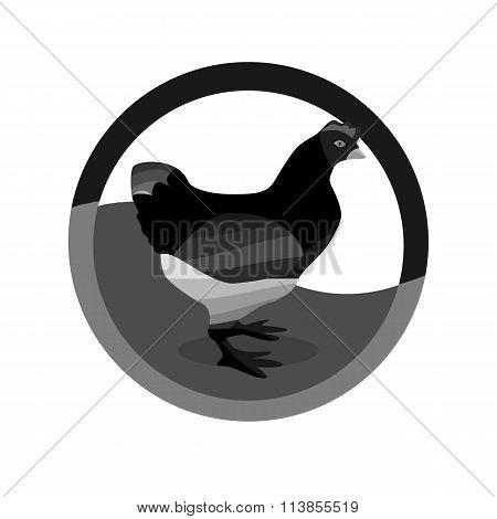 Monochrome Hen