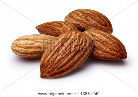 Shelled Almonds Isolated