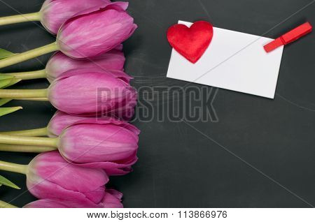 Beautiful Flower Tulips With A Blank Greeting Card