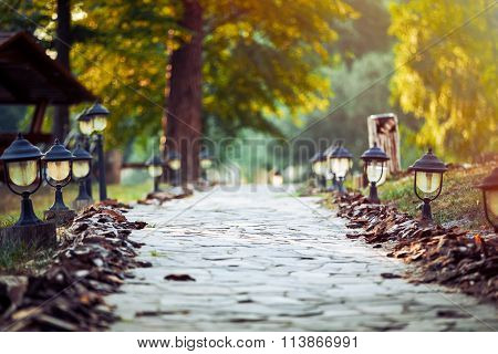 Walkway Lane Path With Green Trees and small lanterns