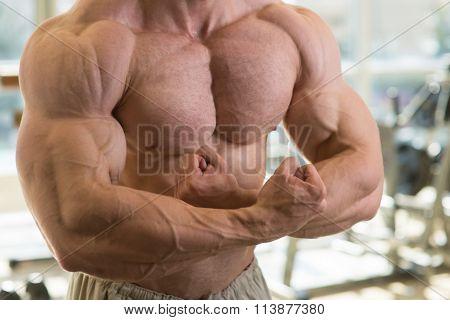 Strong man's torso.