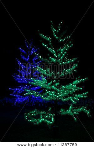 Blue and Green Festive Christmas Trees