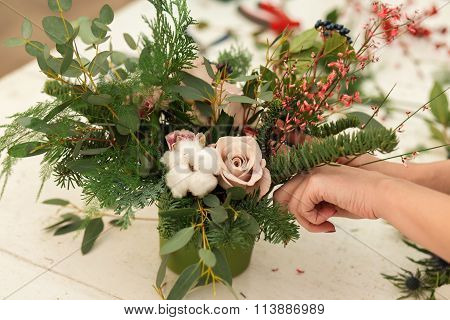 Creating a wonderful composition cotton, cones, fir, magical variety carnations and delicious variet