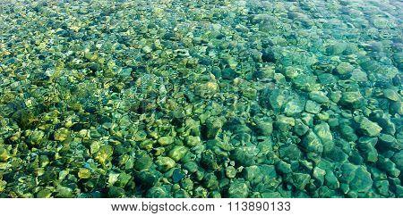 sea stones at the bottom